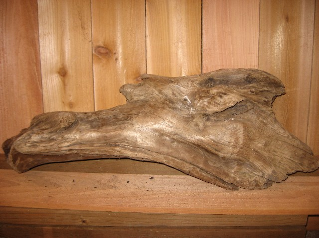 A6) Driftwood Specimen 32 in. Long x 12 in. High