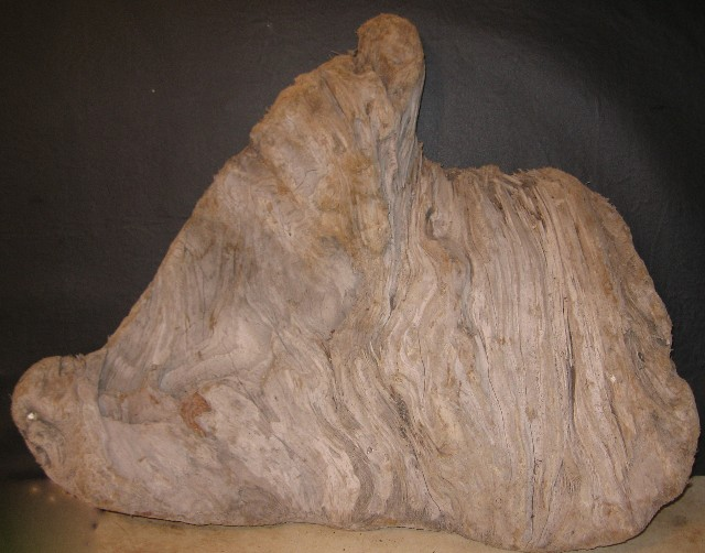 A1) Driftwood Specimen 27 in Long x21 in. tall